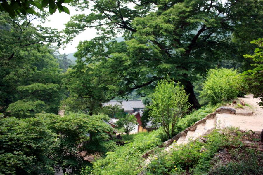 chilgabsan-2010-0618-313.jpg