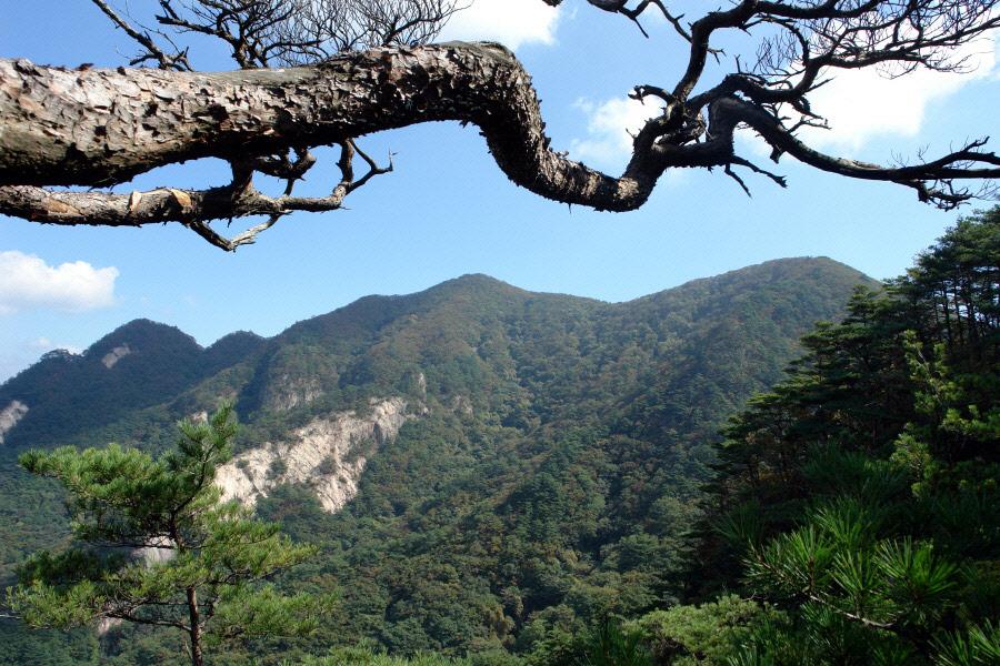 joryeongsan-2010-10-06-1121.jpg