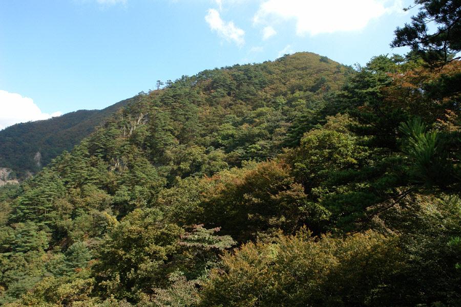 joryeongsan-2010-10-06-1143.jpg