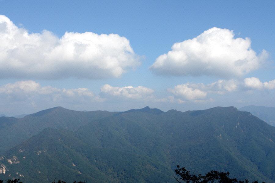 joryeongsan-2010-10-06-1171.jpg
