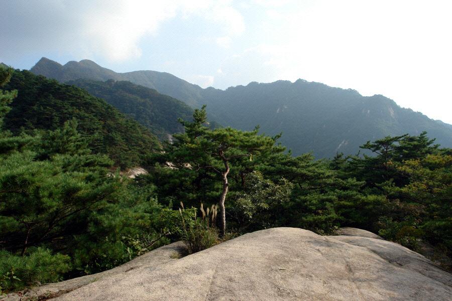 joryeongsan-2010-10-06-1282.jpg