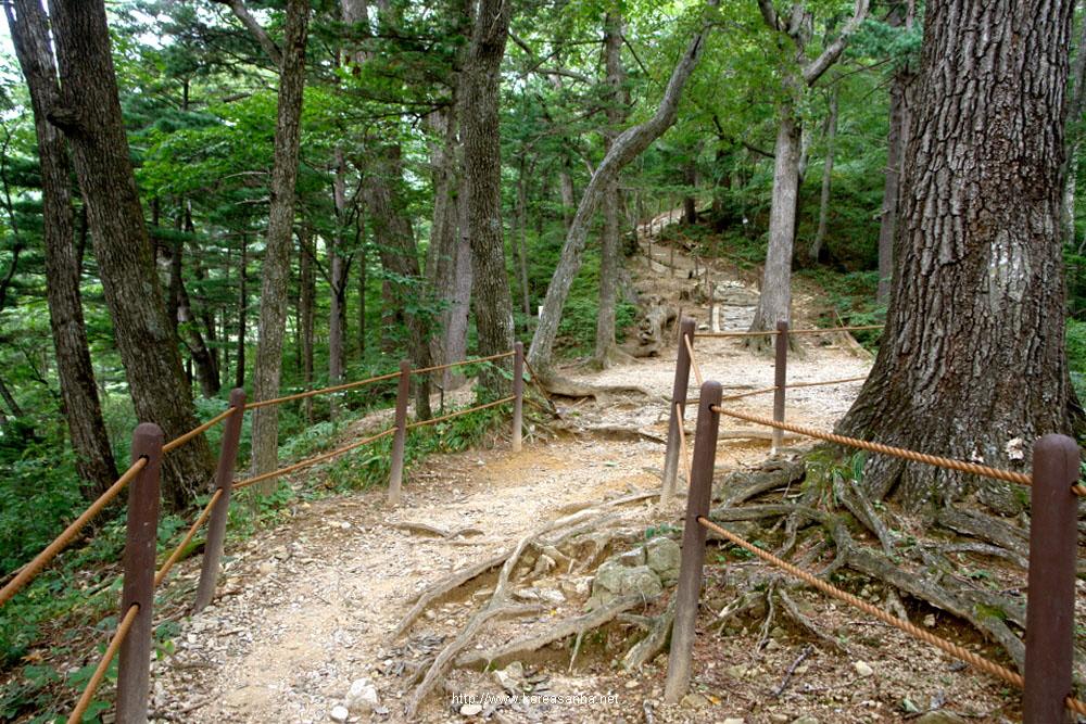 odaesan-2010-09-17-1061.JPG