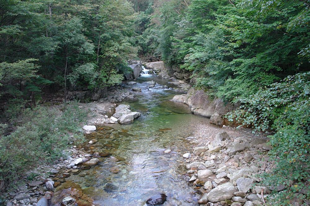 odaesan-2010-09-17-1139.JPG