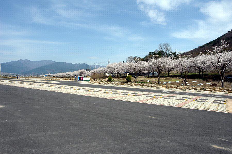 seomjingang-2010-04-09-122.jpg