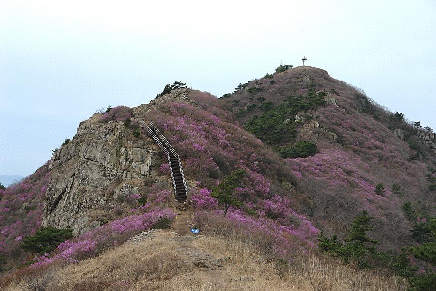 yeongchwisan-2010-04-09-1085.jpg