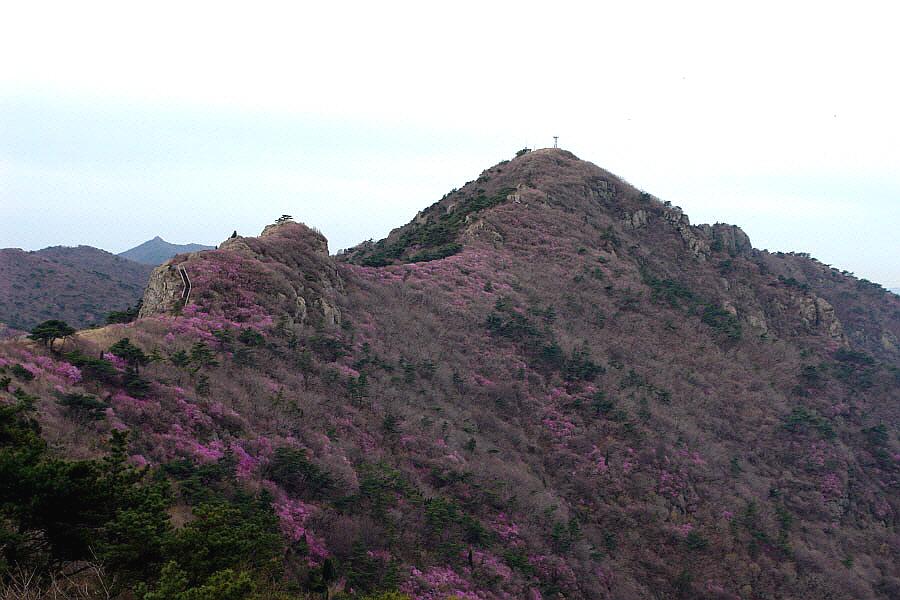 yeongchwisan-2010-04-09-1118.jpg