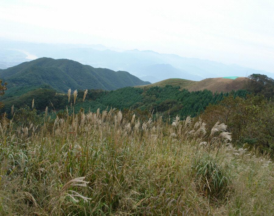 yumyeongsan-2010-09-29-1025.jpg