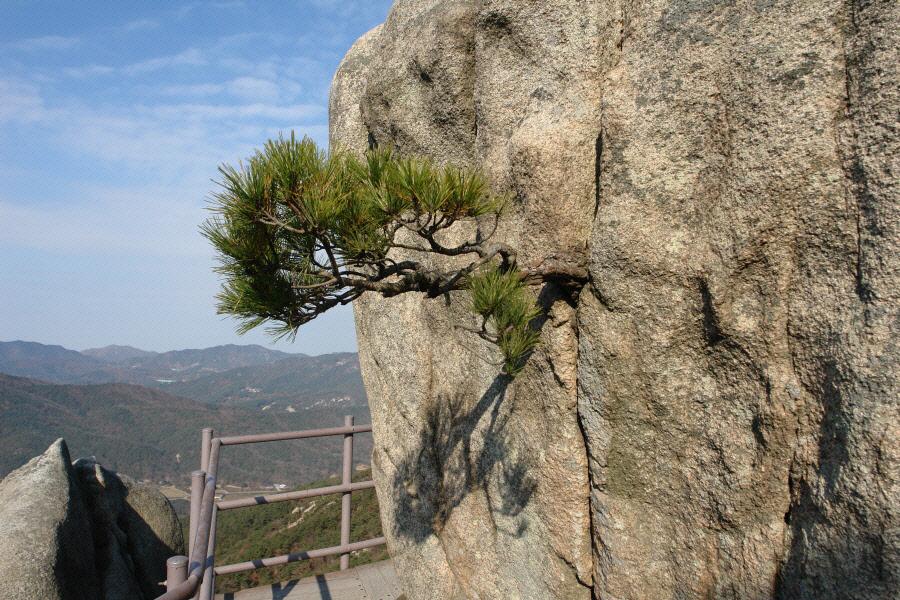 yongbongsan-2010-11-16-1040.jpg