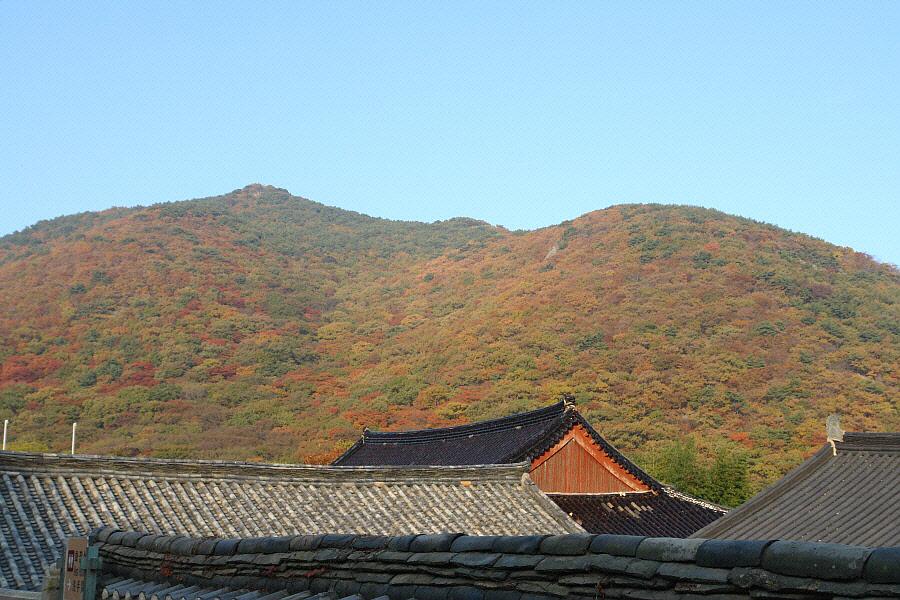 geumjeongsan-2010-11-07-1123.jpg