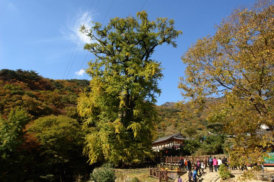 yongmunsan-2010-10-30-1015.jpg