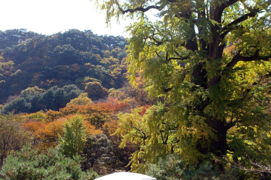 yongmunsan-2010-10-30-1031.jpg