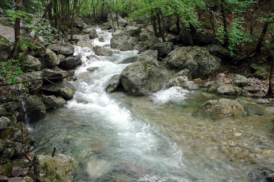chiagsan-2011-07-102.jpg