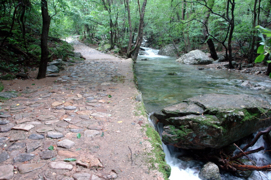 chiagsan-2011-07-104.jpg