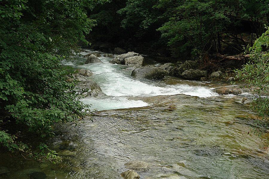 chiagsan-2011-07-305.jpg