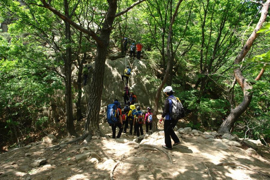 gwanagsan-2011-06-05-1074.JPG
