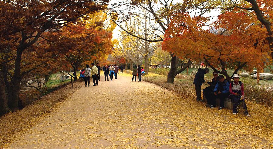seonunsan-2011-11-03-112.JPG