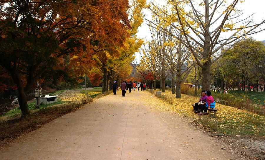 seonunsan-2011-11-03-113.JPG