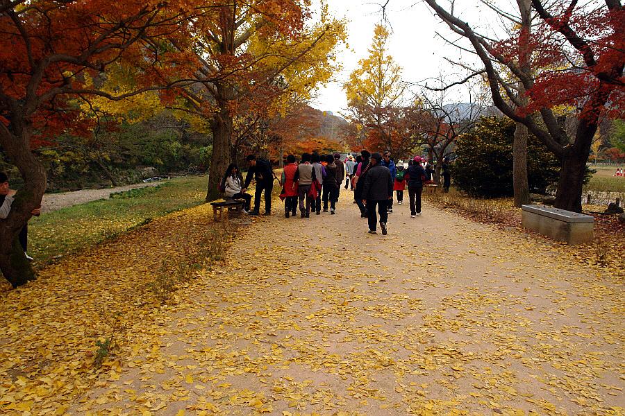 seonunsan-2011-11-03-116.JPG