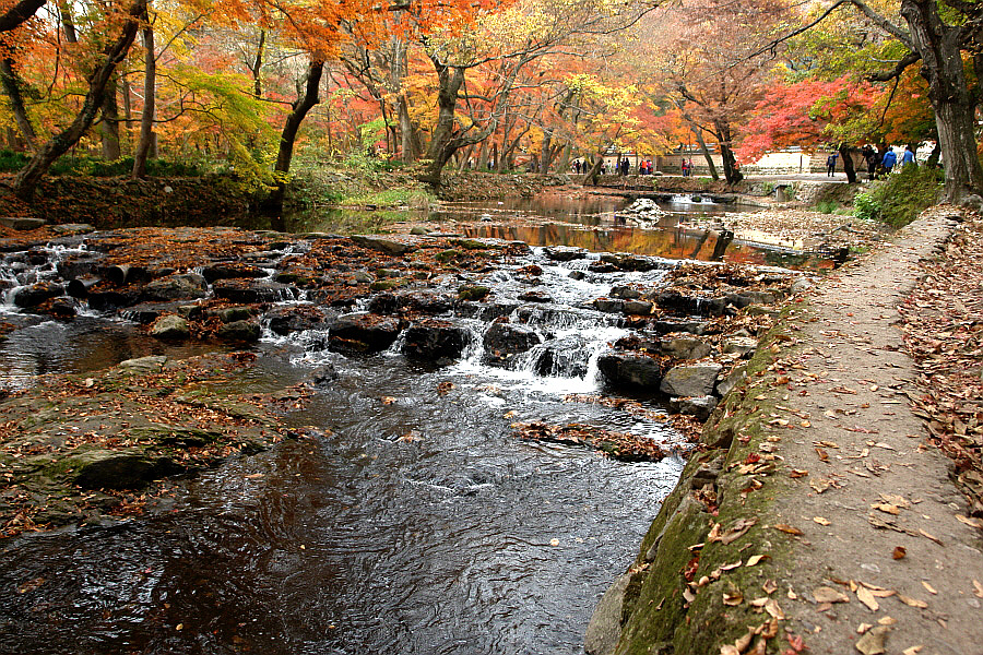 seonunsan-2011-11-03-123.JPG