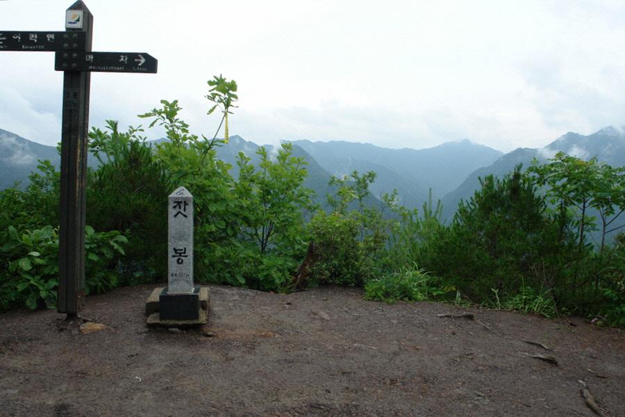 yeongwol-eorayeon-2011-07-12-53002.jpg