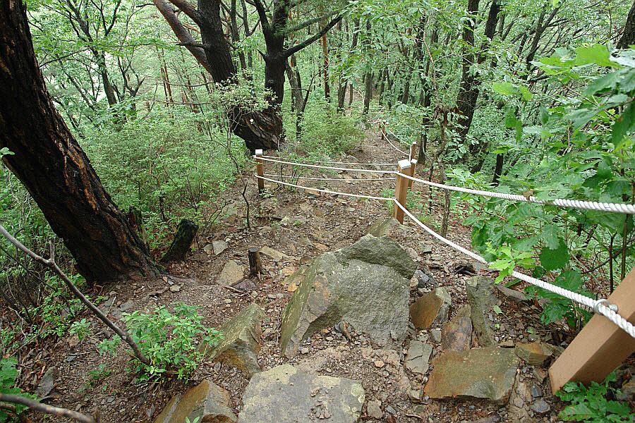 yeongwol-eorayeon-2011-07-12-53004.jpg