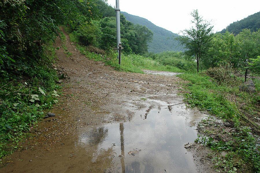 yeongwol-eorayeon-2011-07-12-56002.jpg