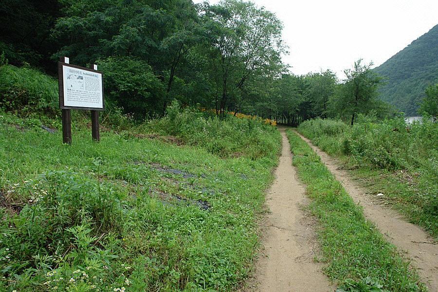 yeongwol-eorayeon-2011-07-12-56007.jpg
