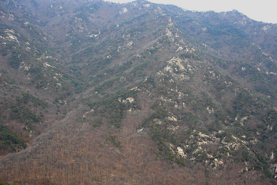samseongsan-22012-0304-118.jpg