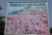 baraebong_2006_05_20_1028.JPG