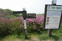 baraebong_2006_05_20_1128.JPG