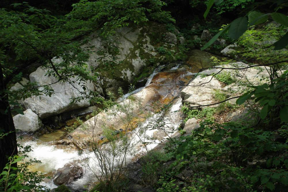 myeongjisan_2006_05_31_105.jpg