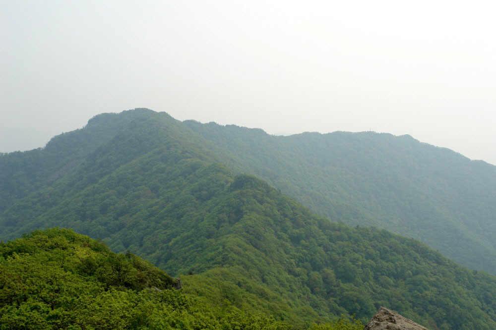 myeongjisan_2006_05_31_119.jpg