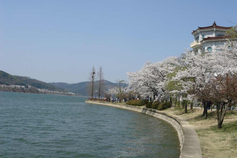 gyeongju-2007-0407-1018.jpg