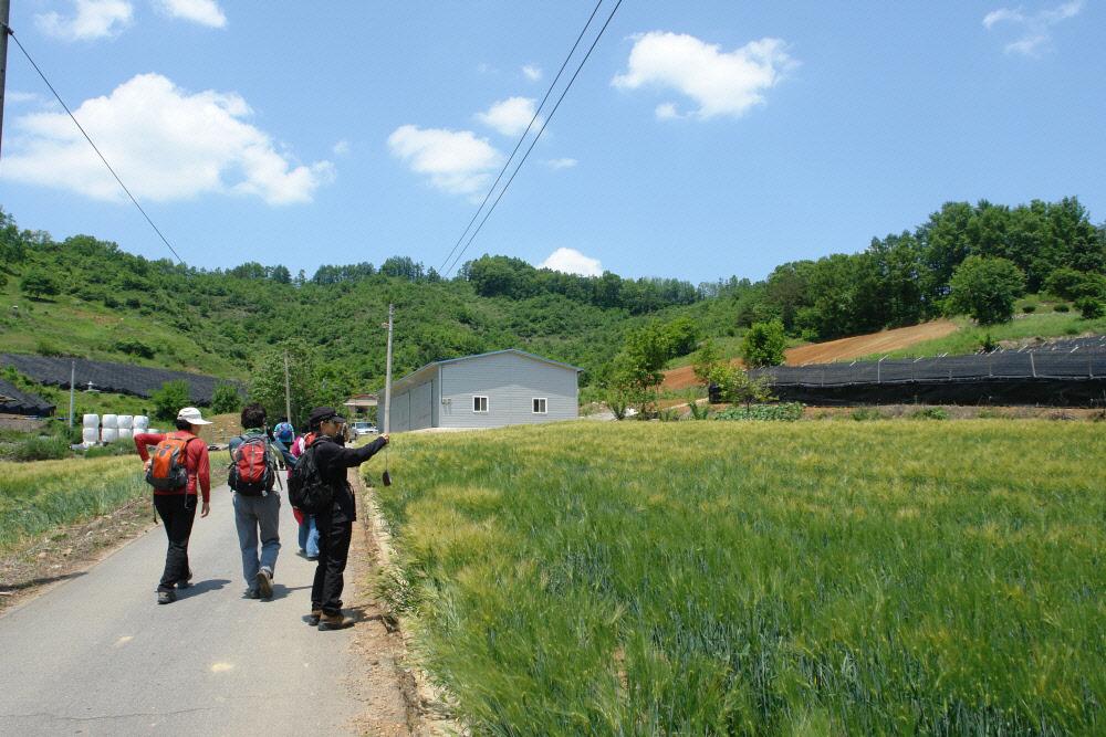 dunjubong-2010-06-02-1006.jpg