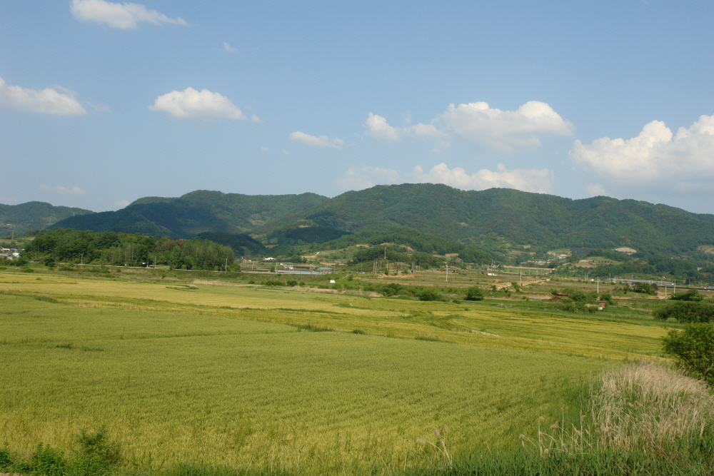 dunjubong-2010-06-02-1170.JPG