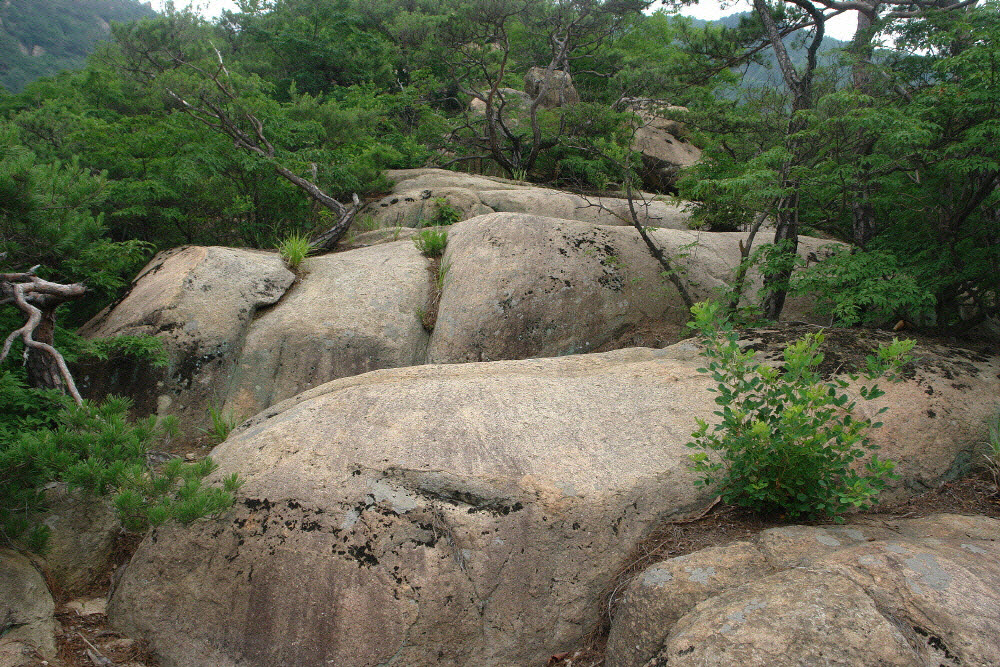 geumsusan-2011-07-05-2021.jpg