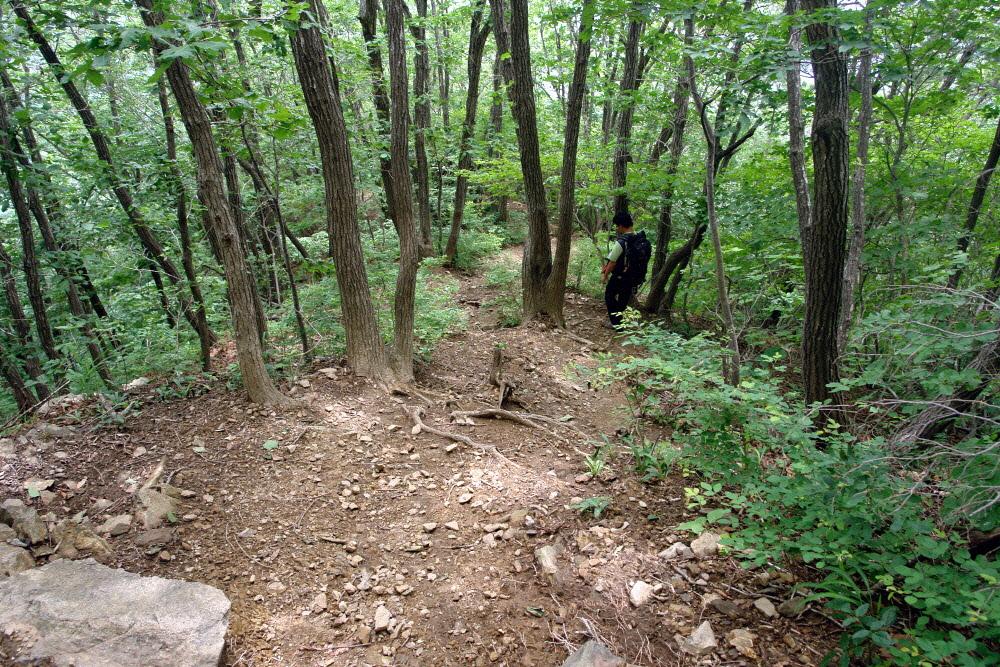 geumsusan-2011-07-05-2066.jpg