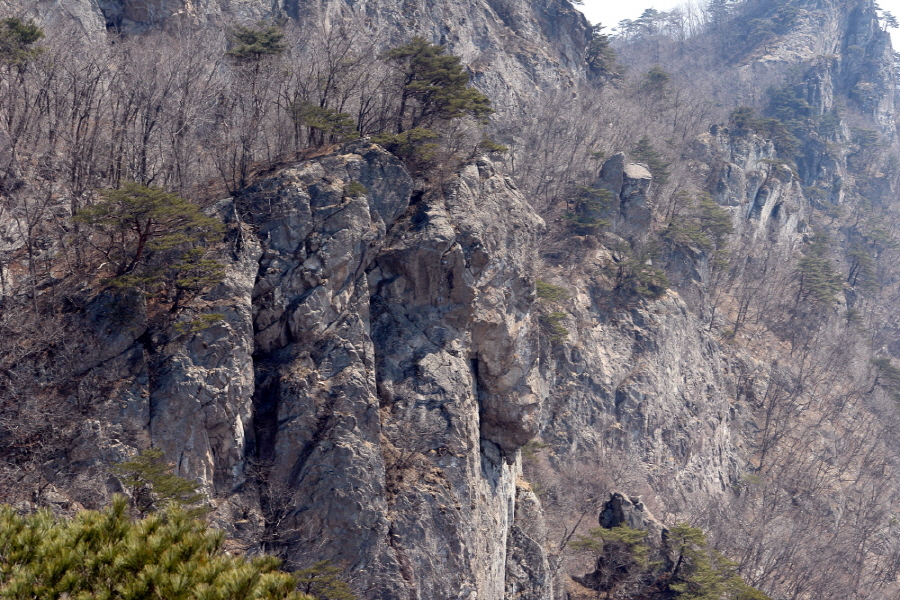 gubyeongsan-2011-03-30-116.JPG