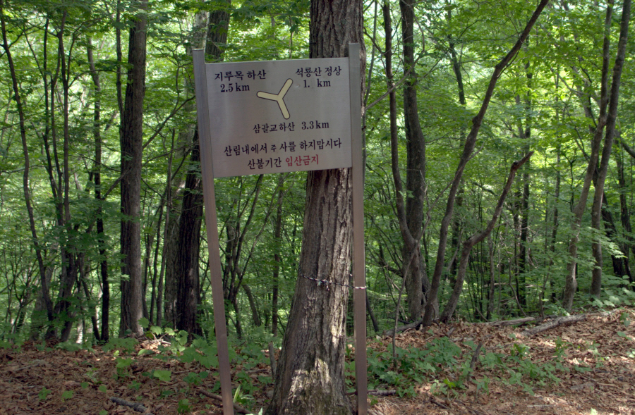 seongryongsan-2011-06-10-1038.jpg