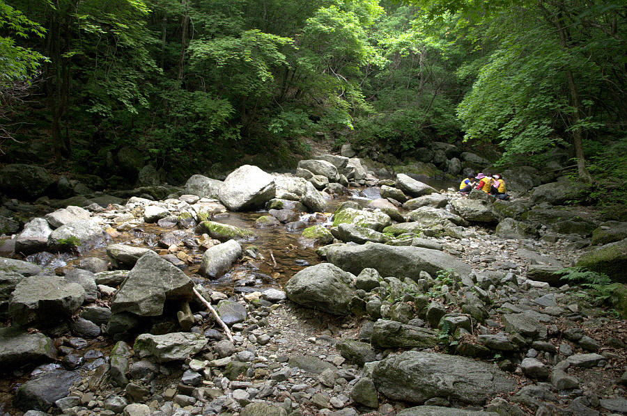 seongryongsan-2011-06-10-1060.jpg