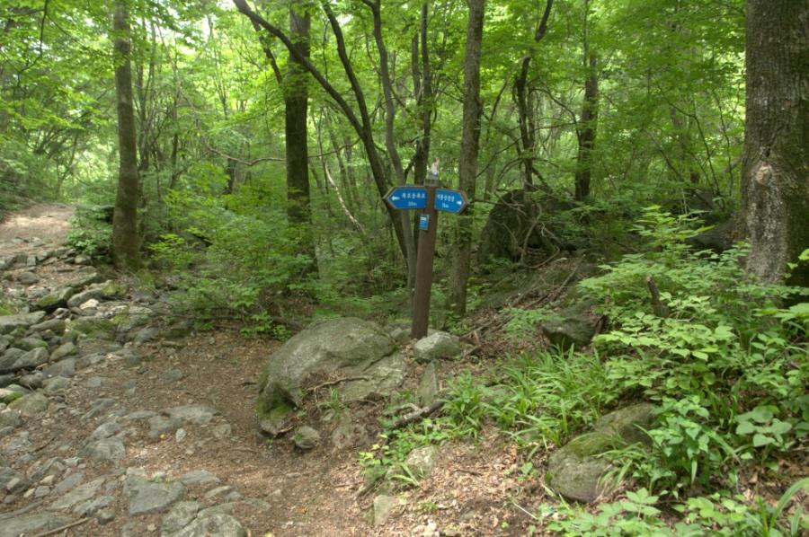 seongryongsan-2011-06-10-1064.jpg