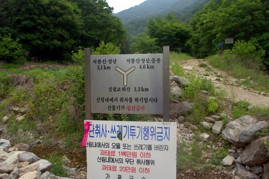 seongryongsan-2011-06-10-1070.jpg