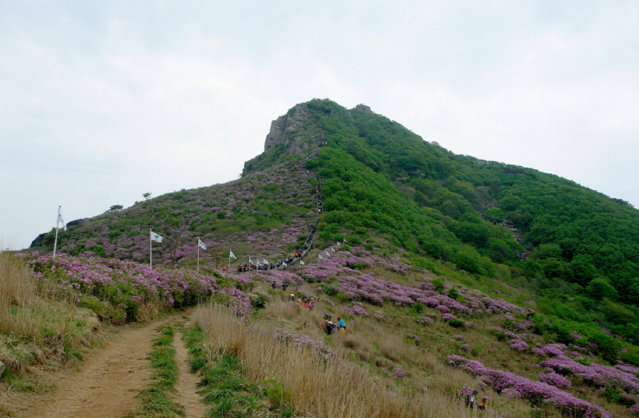 hwangmaesan-2012-05-13-1048.jpg